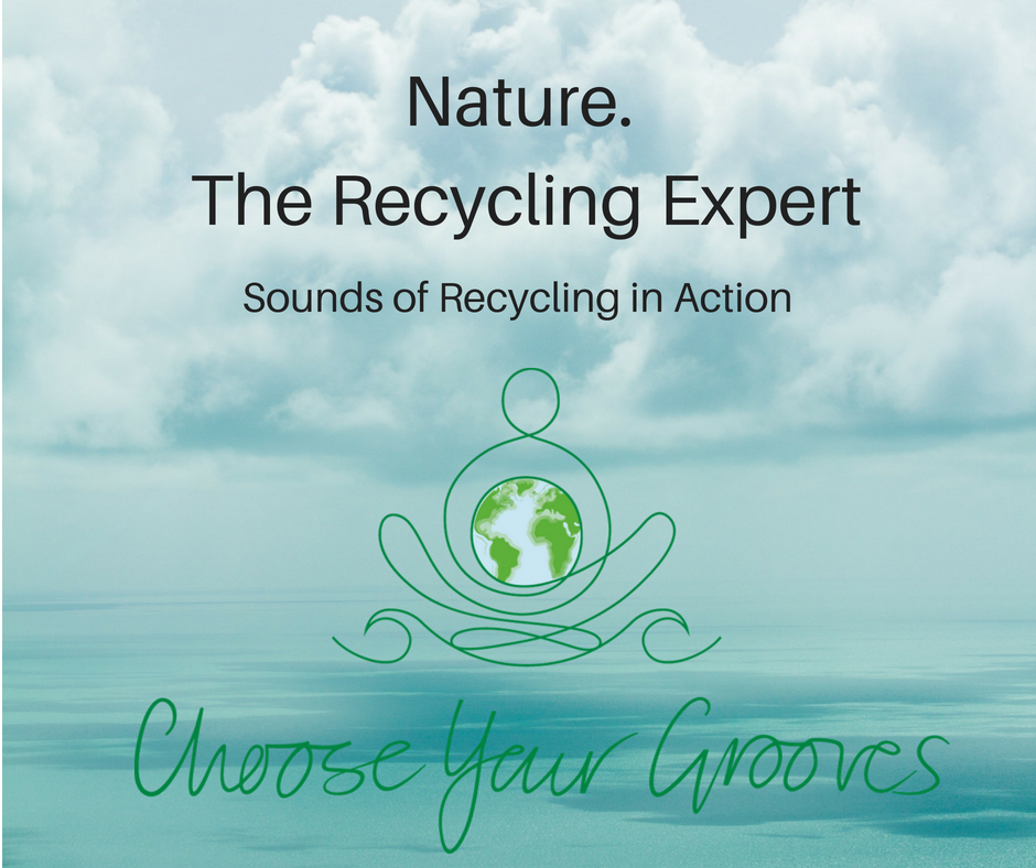 Nature. Recycling Expert Choose Your Grooves