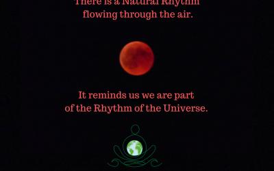 Ep 121 Natural Rhythms